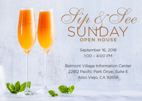 Sip and See Sunday